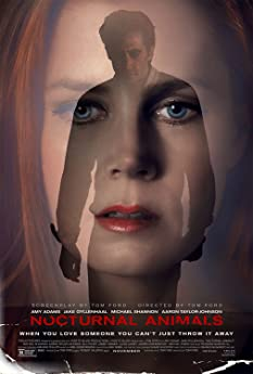 An art gallery owner is haunted by her ex-husband's novel, a violent thriller she interprets as a veiled threat and a symbolic revenge tale.
