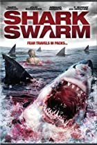 Image of Shark Swarm