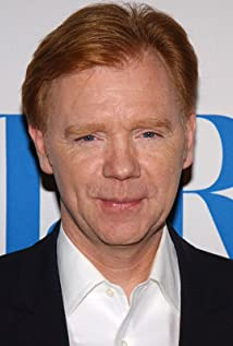 David Caruso Picture