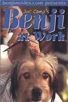 Image of Benji at Work