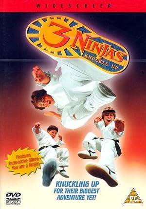 Poster 3 Ninjas Fight & Fury