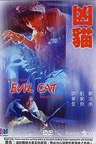 Image of Evil Cat