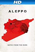 Aleppo. Notes from the Dark