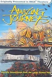 Amazing Journeys Poster