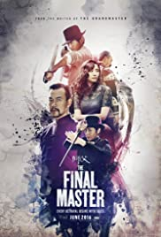 The Final Master (Shi Fu) (Hindi)