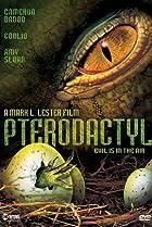 Image of Pterodactyl
