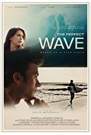 Nonton Film The Perfect Wave (2014)