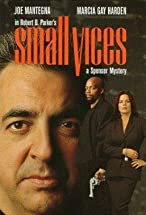 Primary image for Spenser: Small Vices