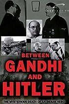 Image of Between Gandhi and Hitler