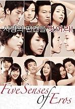 Five Senses of Eros