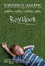 Primary image for Boyhood