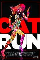 Image of Cat Run