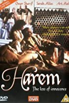 Image of Harem