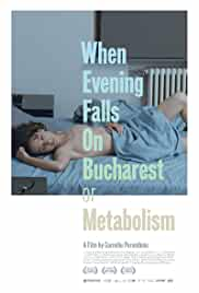 When Evening Falls on Bucharest or Metabolism film poster