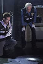Image of CSI: Crime Scene Investigation: It Was a Very Good Year