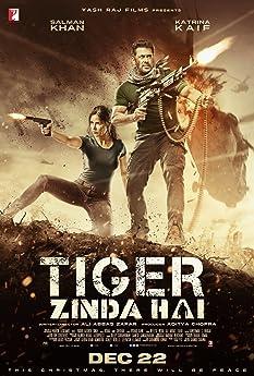 Тигр жив (2017)