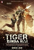 Primary image for Tiger Zinda Hai