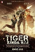 Tiger Zinda Hai (2017) Poster