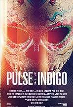 Pulse of the Indigo
