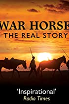 Image of War Horse: The Real Story