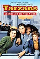 Image of Tarzan's New York Adventure