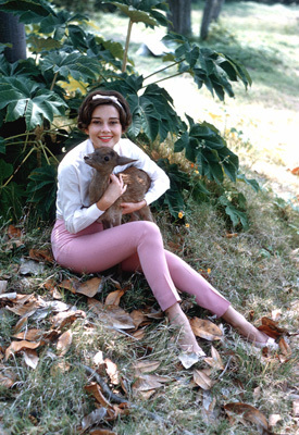 Audrey Hepburn with her pet deer 'Pippin'