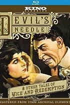 Image of The Devil's Needle