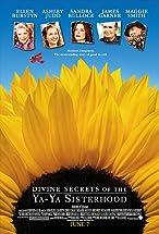 Primary image for Divine Secrets of the Ya-Ya Sisterhood