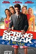 Image of Spring Break Lawyer