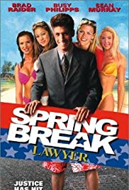 Spring Break Lawyer Poster