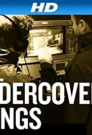 Undercover Stings Poster