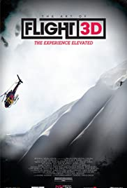 The Art of Flight Poster
