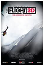 The Art of Flight(2011)