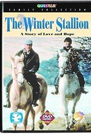 The Christmas Stallion Poster