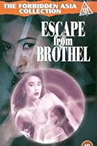 Image of Escape from Brothel