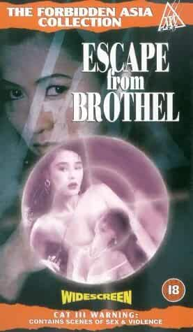 [18+] Escape from Brothel 1992 Hindi Dual Audio 480p DVDRip 300MB