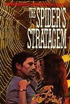 Image of The Spider's Stratagem