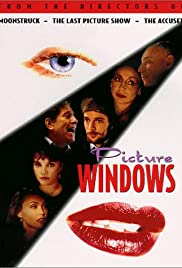 Picture Windows Poster