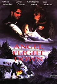 Angel Flight Down (1996) Poster - Movie Forum, Cast, Reviews