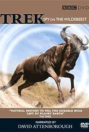 Trek: Spy on the Wildebeest Poster