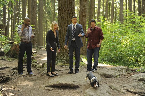Dulé Hill, Maggie Lawson, Timothy Omundson, and James Roday in Psych (2006)