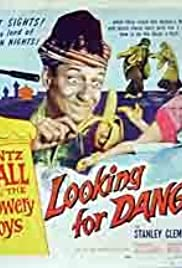 Looking for Danger Poster