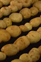 Image of Modern Marvels: The Potato