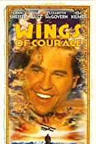 Image of Wings of Courage