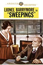 Image of Sweepings