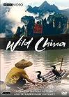 """""""Wild China"""""""