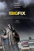 Image of The Big Fix
