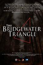 Image of The Bridgewater Triangle