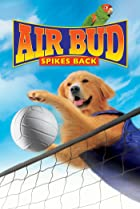 Image of Air Bud: Spikes Back