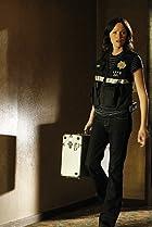 Image of CSI: Crime Scene Investigation: Wild Life